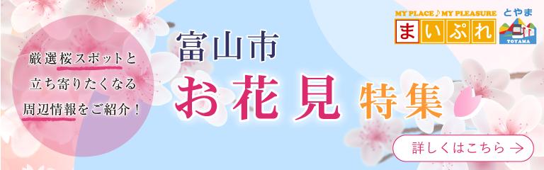 まいぷれ富山「富山市お花見特集」