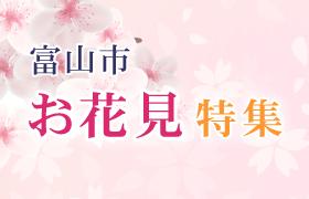 まいぷれ富山「富山市お花見特集」掲載